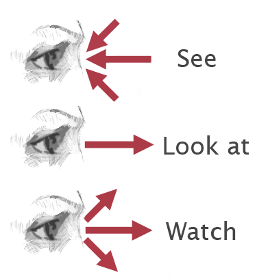 watch see-look
