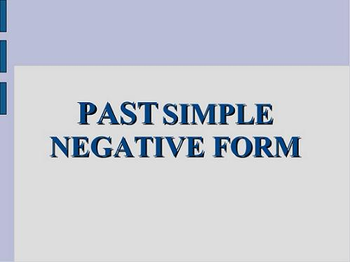 negative Past Simple